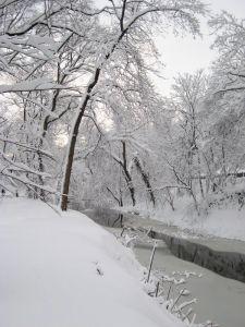 Rock Creek Park, February 2010