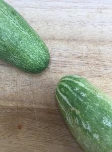 cucumbers_29466424642_o